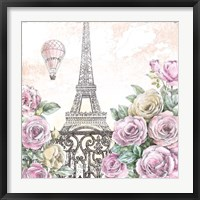 Framed Paris Roses VI