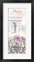 Framed Paris Roses Panel VII