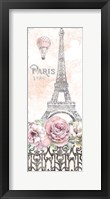 Framed Paris Roses Panel VIII