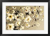 Framed Anemones Japonaises Blancs