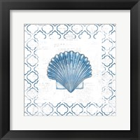 Navy Scallop Shell on Newsprint Framed Print