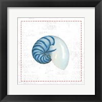 Navy Nautilus Shell on Newsprint with Red Framed Print