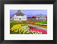 Framed Botanical Gardens, Buffalo, NY