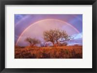 Framed Arizona Rainbow