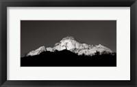 Framed Zion Tree Silhouette