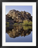 Framed Joshua Tree Lake