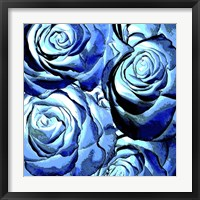 Framed Blue Roses Square