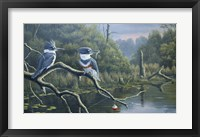 Framed Fisherman's Luck, Belted Kingfishers