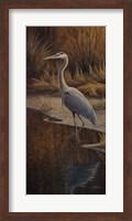 Framed Heron Wading
