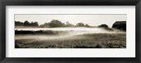 Framed Fog in the Hills