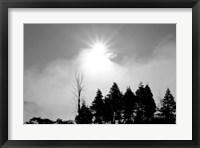 Framed Sunfire