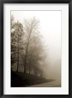 Early Morning III Framed Print
