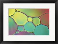 Framed Stained Glass I