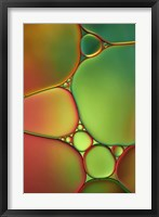 Framed Stained Glass II