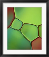 Framed Stained Glass IV