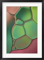 Framed Stained Glass V