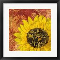 Framed Sunflower - Love of Light