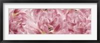 Framed Pink Tulips Scape