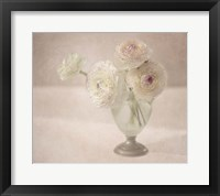 Framed White Persian Buttercups Posy