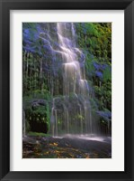 Framed Majestic Waterfall