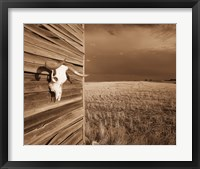 Framed Cows Skull in the Country