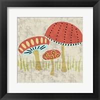 Framed Ada's Mushrooms