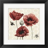 Poppy Buzz II Framed Print