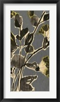 A Touch of Olive II Framed Print