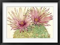 Framed Cactus Blossoms I