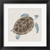 Framed Sea Turtle I