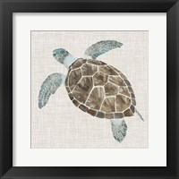 Framed Sea Turtle II