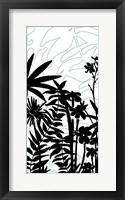 Rainforest Ferns I Framed Print