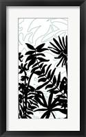 Rainforest Ferns II Framed Print