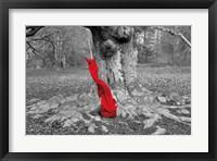 Flow I Framed Print