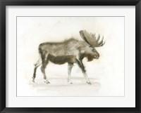 Framed Dark Moose