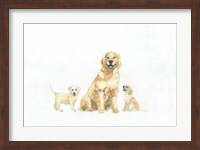 Framed Dog and Puppies