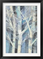 Framed Winter Birches I