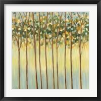Framed Awakening Tree Tops