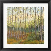 Framed Vista Trees