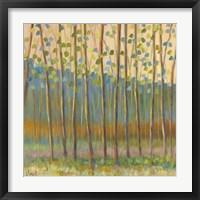 Framed Through Pastel Trees