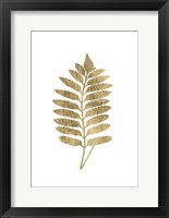 Framed Graphic Gold Fern III