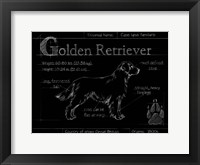 Framed Blueprint Golden Retriever