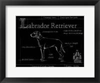 Framed Blueprint Labrador Retriever