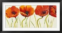 Row of Tulips II Framed Print