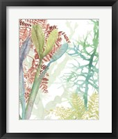 Woven Seaplants II Framed Print
