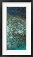 Framed Caribbean - C
