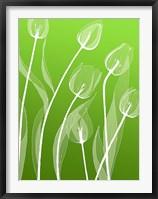 Framed Floral Silhouette 4