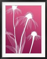 Framed Floral Silhouette 5