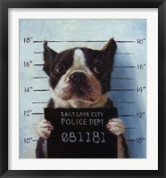Framed Mug Shot
