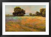 Framed Spring Meadow